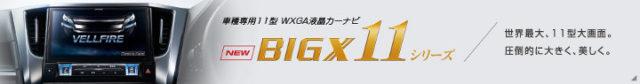 bigx11