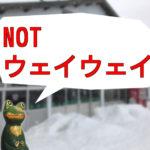コミュ症スノーボーダーは、道後山へ行け! 6つのポイントでオススメする広島県のスキー場